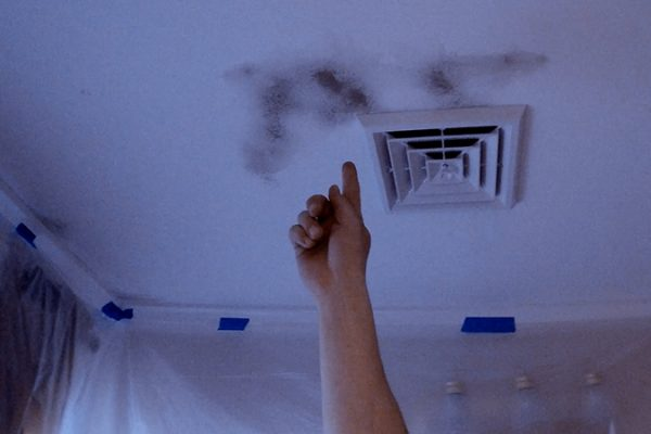 Is That Mold on the Ceiling?